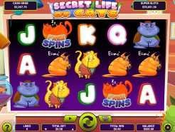 Secret Life Of Cats Slots